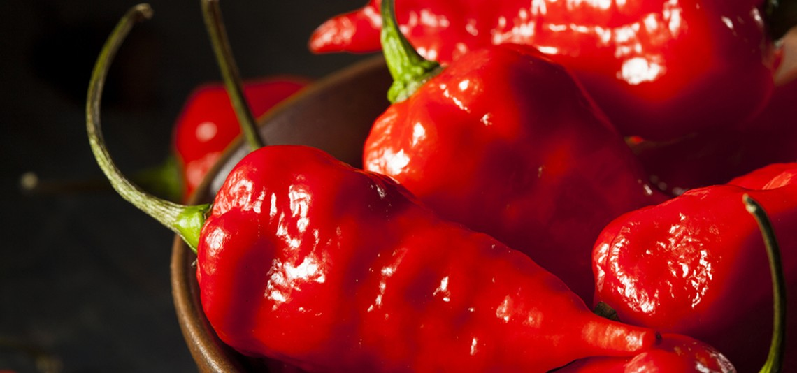 Smoking Hot! The 10 Hottest Chili Peppers In The World